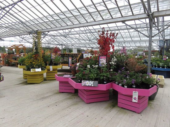 Charmant Garden Wise: Extensive Displays