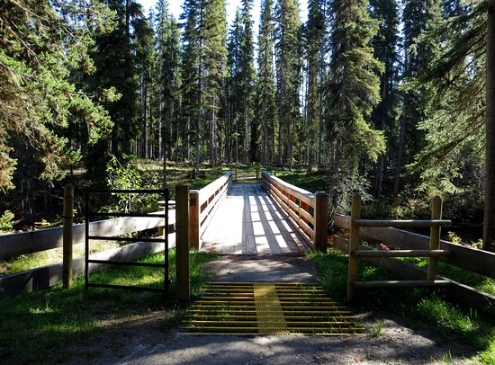 Horsefly, Kanada: the bridge to view the other side of the Falls