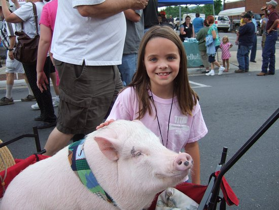 Old Fort, NC: Marion's annual Livermush Festival, first Friday night in June!