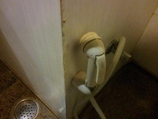 Vesta International: Filthy bathroom fixture