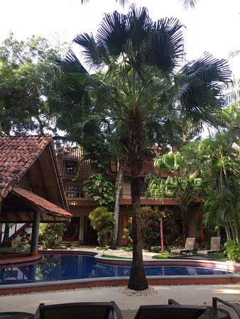 Playa Grande, Kostaryka: Hotel El Manglar