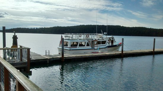 Orcas Island Eclipse Charters: Our boat, the Orca Express