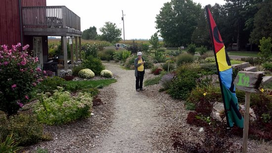 Morpeth, Kanada: beautiful garden
