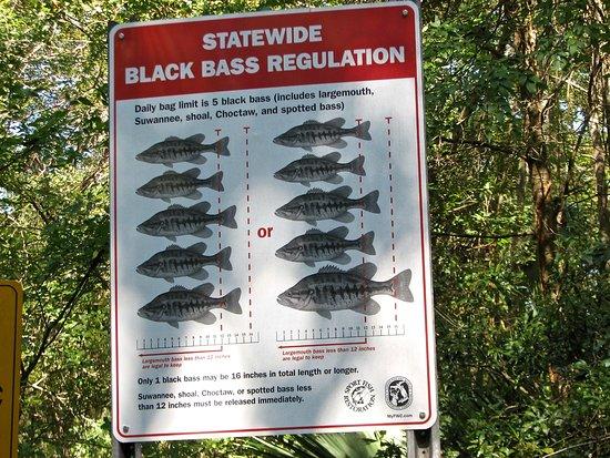 Live Oak, FL: Fishing rules