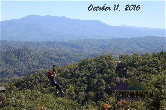 Legacy Mountain Ziplines: FB_IMG_1476218839094_large.jpg