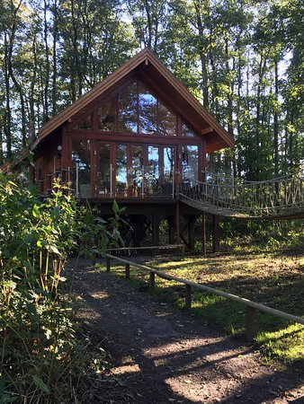 Forton, UK: This is the Tree House lodge