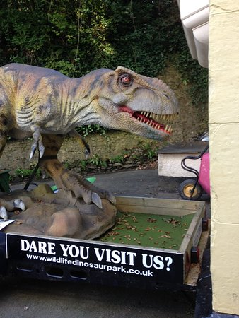 Ilfracombe, UK: t-rex