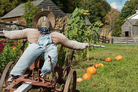 Cooperstown, estado de Nueva York: Fall pumpkin patch