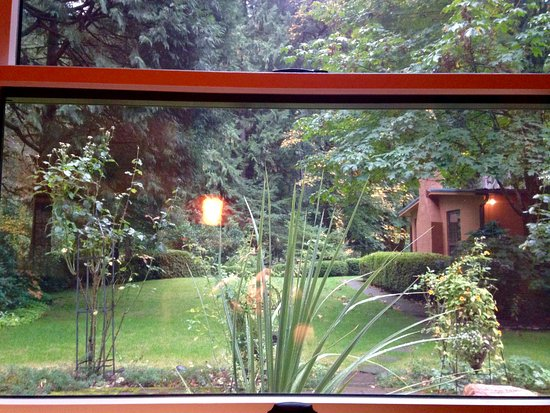 Vida, OR: View from one of the Songbird windows.