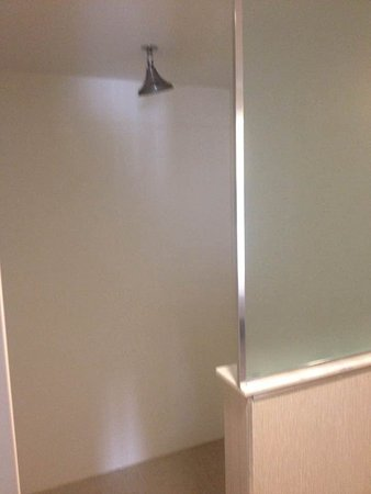 Holiday Inn Express Neptune: Massive shower, no separate hose, overhead only