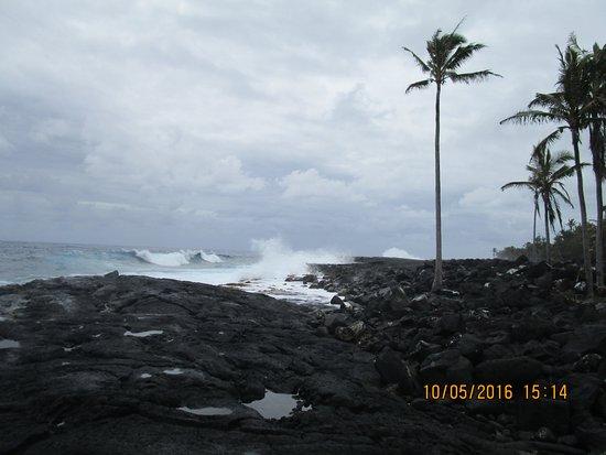 Pahoa, Hawái: Ocean beyond pool area