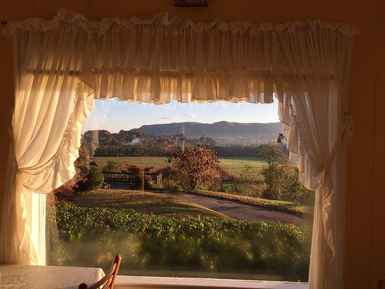 Pines Country Inn: photo3.jpg