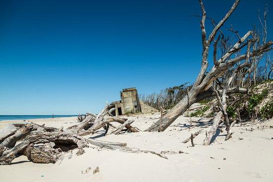 Bribie Island, Australia: Fort Bribie