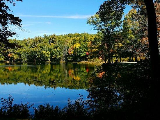 Amherst, MA: Puffer's Pond