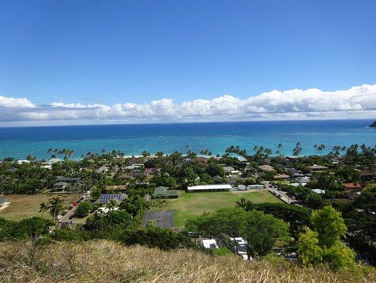 Oahu Van Charter Tours - AA Hawaii Tours: photo5.jpg