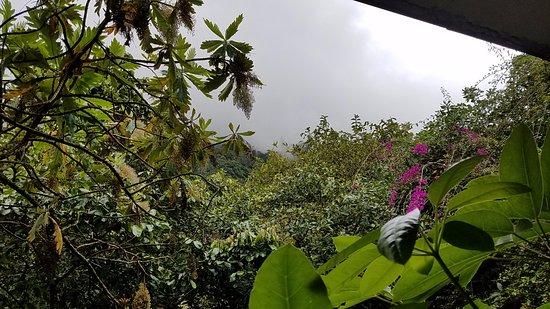 Hostal Isla de Baños Foto
