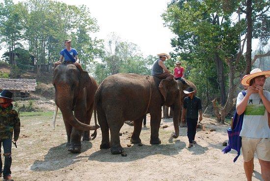 Provincia di Chiang Mai, Thailandia: Mai 2016