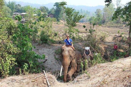 "Provincia di Chiang Mai, Thailandia: Mai 2016 beim ""Spazieren gehen"""