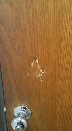 Le Roy, IL: Hole in back of bathroom door