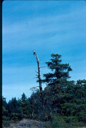 Lund, Canadá: Okeover Arm Provincial Park
