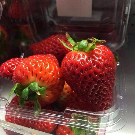 Swan Hill, Australia: Beautiful lake boga strawberries in now