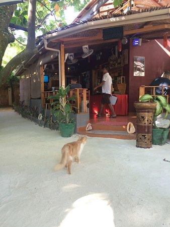 Stingray Beach Inn: photo0.jpg