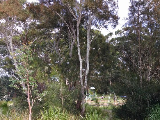 Huskisson, Australien: From beach through to park