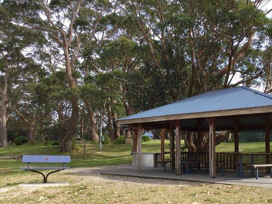 Huskisson, Australien: Picnic area