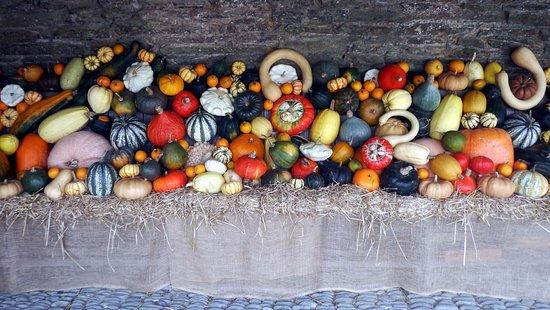 St Austell, UK: Harvest Festival display.