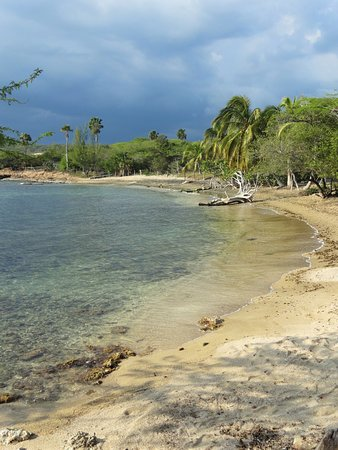 Treasure Beach, Jamaika: View from Jack Sprat's