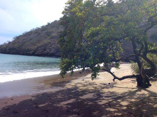 Floreana, Ecuador: Black beach
