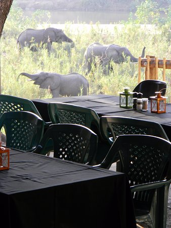 Balule Nature Reserve, Sudáfrica: Catering can be done on request. We specialize in big groups.