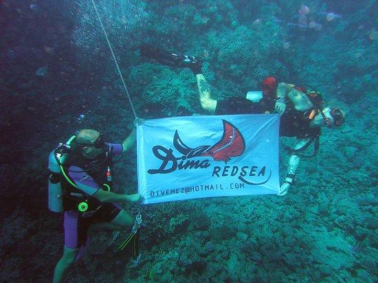 Dima Red Sea