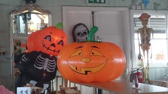 Llanfairfechan, UK: Pumpkin pals chilling out