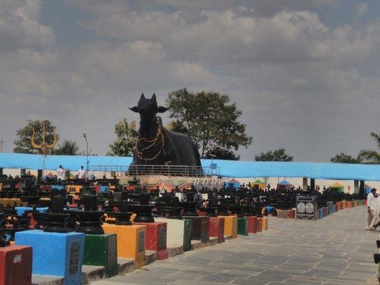Kotilingeshwara Temple Picture Of Kotilingeshwara Kammasandra