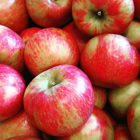 Chardon, OH: Apples and other produce grown at Sage's