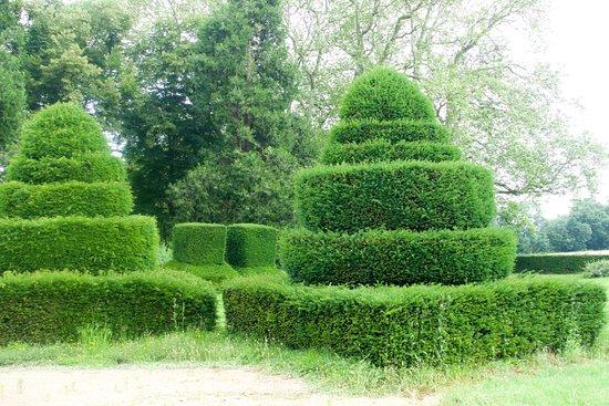 Chateau de Longsard : Ch Longsard, garden. Peculiar cuttings...
