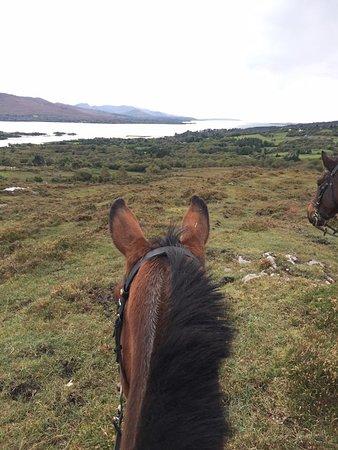 เคนแมร์, ไอร์แลนด์: My noble steed!