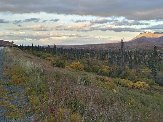 Glacier View, AK: Sheep Mountain Lodge