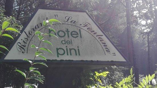 San Terenziano, إيطاليا: IMG_20161015_112605_large.jpg