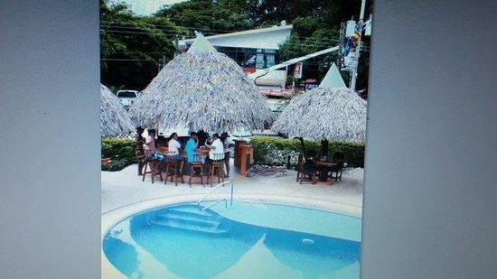 Samara Tree House Inn: 20160815_095110_large.jpg