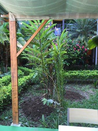 La Casa de las Flores Hotel: Lush gardens everywhere.