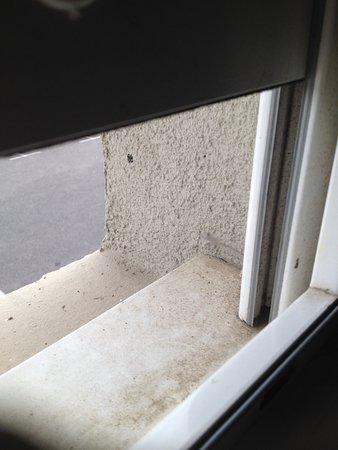 Hotel Arena Montpellier : telarañas en el rincón de la ventana