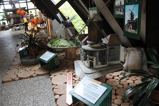 ... Internationales Wind- und Wassermuehlen-Museum, Gifhorn - TripAdvisor