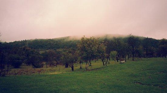 Rosia, Italien: View