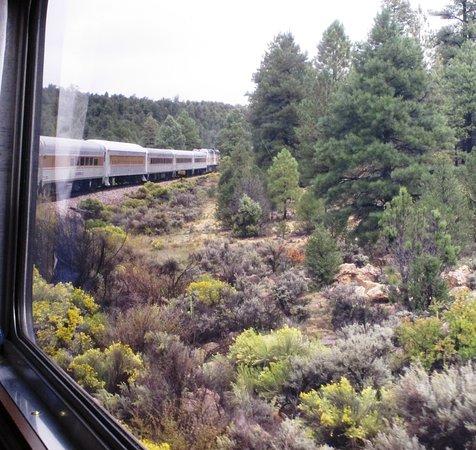 Williams, AZ: long train