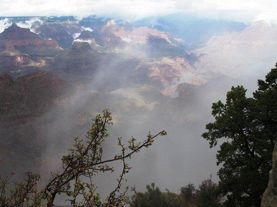 วิลเลียมส์, อาริโซน่า: Fog lifting