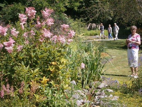 Puhalepa, Estonia: Finsk turistgrupp i Suuremöisas trädgård.