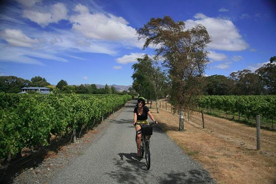 Renwick, Nueva Zelanda: Just cruising between cellar doors