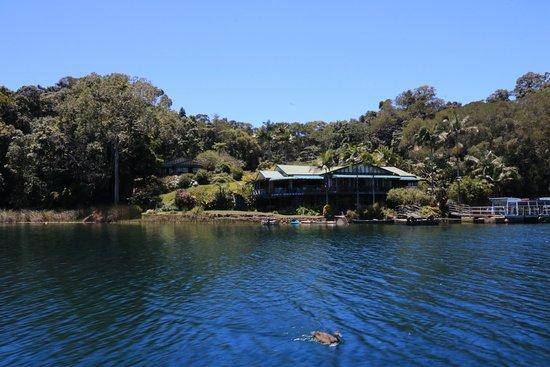 Yungaburra, Australia: Tea house and Lake